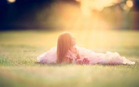 Обои поле, свет, девочка