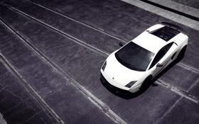 Обои авто фото, тачки, авто обои, cars, auto wallpapers, lamborghini, superleggera