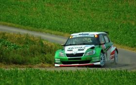 Обои Авто, Трава, Зеленый, Машина, Фары, Rally, Skoda