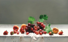 Обои ягоды, стол, картина, клубника, арт, виноград, фрукты