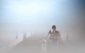 Картинка туман, собака, мальчик