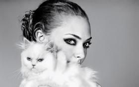Картинка кошка, взгляд, актриса, Amanda Seyfried, ч/б фото, Аманда Сайфред