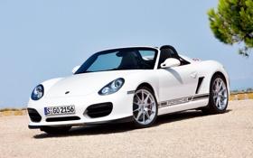 Обои Porsche, кабриолет, 2010, порше, Boxster, Spyder, спайдер