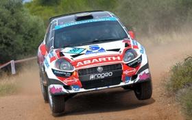 Обои Капот, Фары, WRC, Rally, Ралли, Передок, Abarth