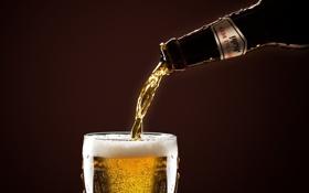 Картинка фон, бутылка, пиво