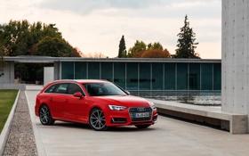 Обои Audi, ауди, quattro, универсал, Avant, 2015, авант