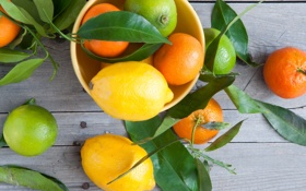 Обои листья, лимон, лайм, цитрусы, мандарины