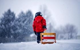 Обои зима, снег, снежинки, природа, ребенок, санки, ребёнок