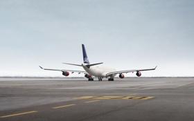 Обои Самолет, На Земле, Крылья, День, Полосы, A340, Авиация