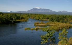 Картинка лес, природа, река, фото, гора, Камчатка