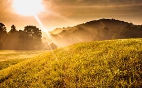 Картинка осень, горы, туман, фото, рассвет, утро, лучи солнца
