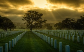 Обои кладбище, USA, San Francisco, сemetery, Сан-Франциско, США