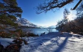 Обои зима, лес, озеро, гора