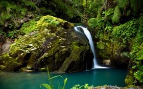 Картинка лес, камни, водопад, Croatia