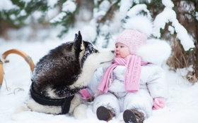Картинка dog, winter, snow, husky, childhood, kid, kids