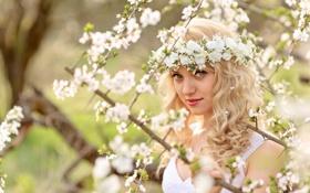 Картинка девушка, весна, Elena