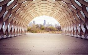 Обои деревья, город, туннель, Чикаго