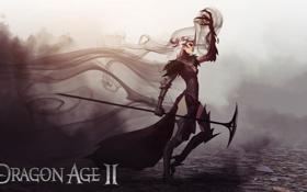 Картинка туман, магия, доспехи, посох, ведьма, Dragon Age, Flemeth