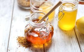 Обои лимон, мед, баночки, ложка, мёд