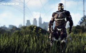 Обои город, герой, нанокостюм, Crysis 3