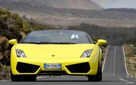 Обои дорога, желтый, движение, суперкар, кабриолет, вид спереди, ламборгини