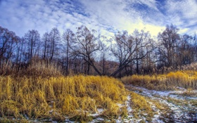 Картинка пейзаж, поле, осень, дорога