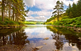 Картинка лес, небо, природа, река, берега