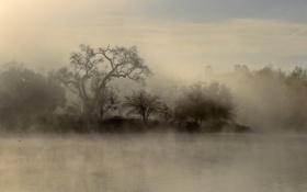 Обои небо, деревья, природа, туман, озеро, Пейзаж, sky