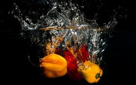 Обои брызги, всплеск, овощи, еда, вода, перец