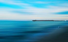 Картинка море, пейзаж, мост, стиль, птица