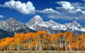 Картинка осень, лес, небо, листья, облака, деревья, горы