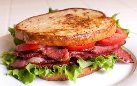 Обои мясо, бутерброд, аппетитный