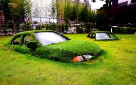Обои трава, машины, город, газон, остов