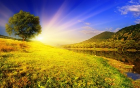 Картинка небо, трава, вода, солнце, лучи, деревья, природа