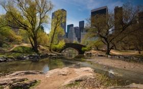 Картинка небо, деревья, мост, дома, весна, Нью-Йорк, США