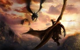 Обои драконы, арт, всадники