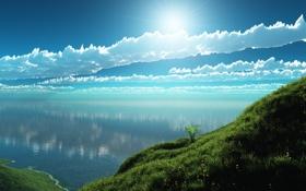 Картинка трава, облака, озеро, берег