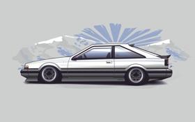 Обои горы, япония, вектор, Silvia, Nissan, ниссан, stance