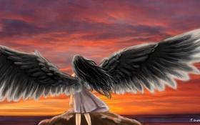 Обои море, небо, девушка, закат, спина, крылья, ангел