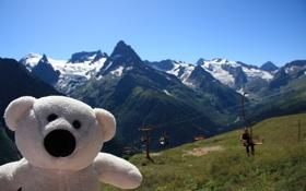 Обои горы, природа, настроение, игрушка, мишка, путешествие, Домбай