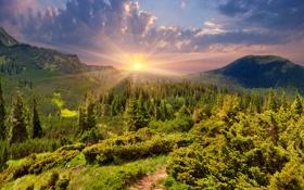 Картинка трава, солнце, горы, landscape, nature, луга