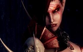 Обои взгляд, лицо, красные глаза, скайрим, Skyrim, The Elder Scrolls V, вампирша