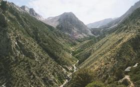 Картинка лес, река, горы, каньон, зелень, красота