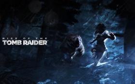 Обои лес, ночь, погоня, медведь, tomb raider, Lara Croft, Rise of the Tomb Raider