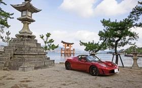 Картинка небо, красный, дерево, берег, Roadster, родстер, спорткар