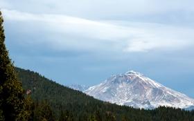 Картинка небо, облака, деревья, Калифорния, США, Каскадные горы