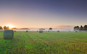 Обои поле, закат, туман, утро, роллы