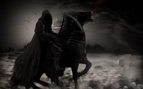 Обои птицы, смерть, камни, тьма, лошадь, крест, коса