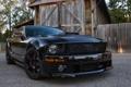 Картинка Mustang, Ford, мустанг, сарай, форд, 2009, BlackJack