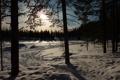 Картинка зима, снег, деревья, природа, фото, Norrbotten, Kangosfors